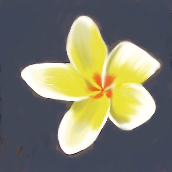 Digital painting of a yellow and white plumeria flower