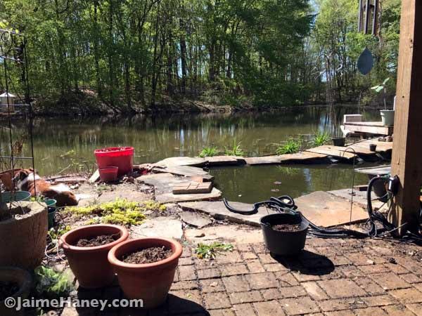 Studio Gardens koi pond left side