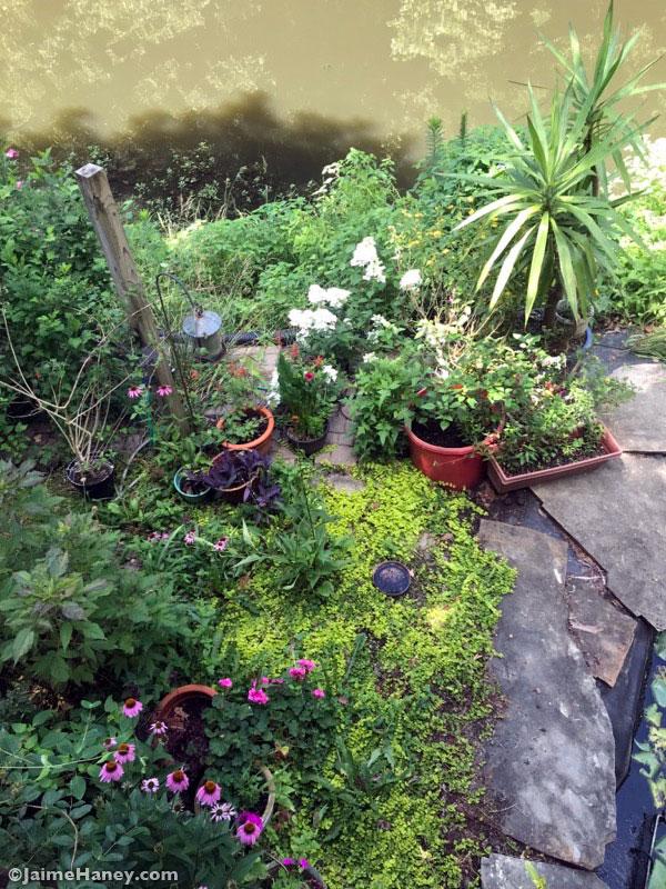 Closer view of Studio Gardens left side area