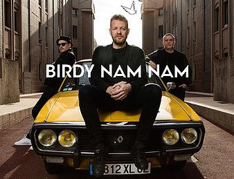 festival de la paille 2016 - birdy nam nam