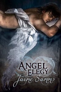 Book Cover: Angel Elegy