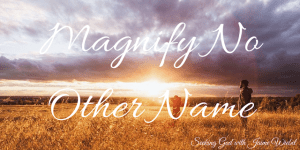 Magnify No Other Name & Sitting Among Friends #52
