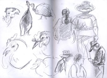 SF_15_sketches1