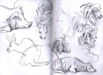 SF_15_sketches2