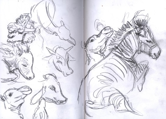 SF_15_sketches5