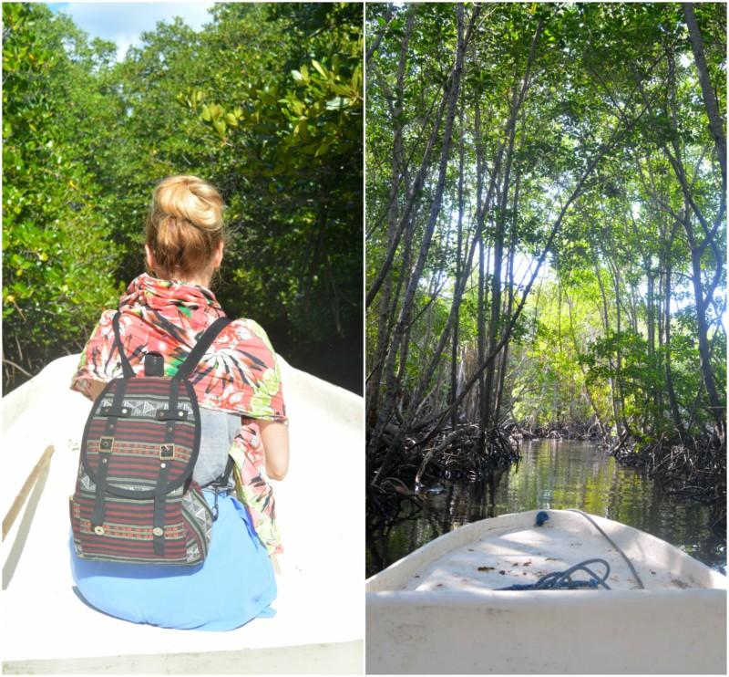 Mangrove Nusa Lembongan collage www.jaimyskitchen.nl