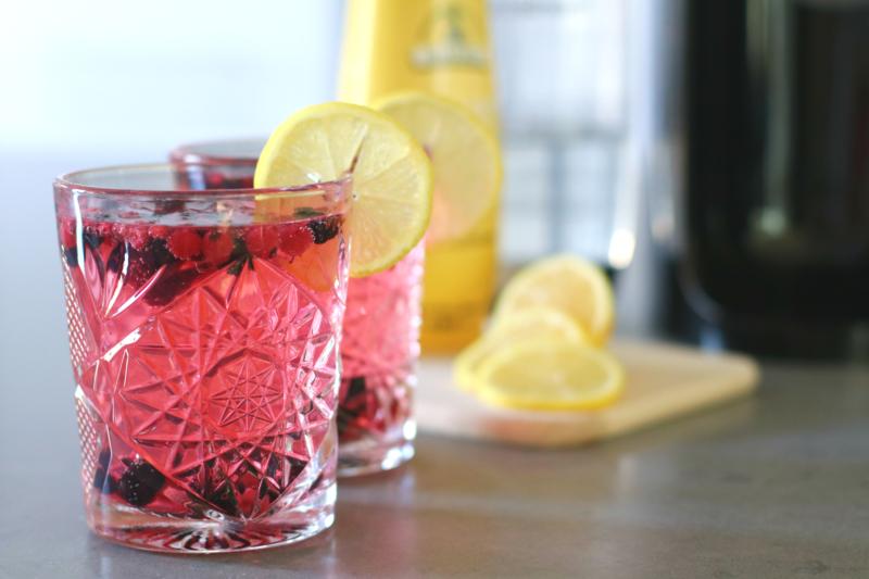 Tonic met rood fruit SodaStream www.jaimyskitchen.nl