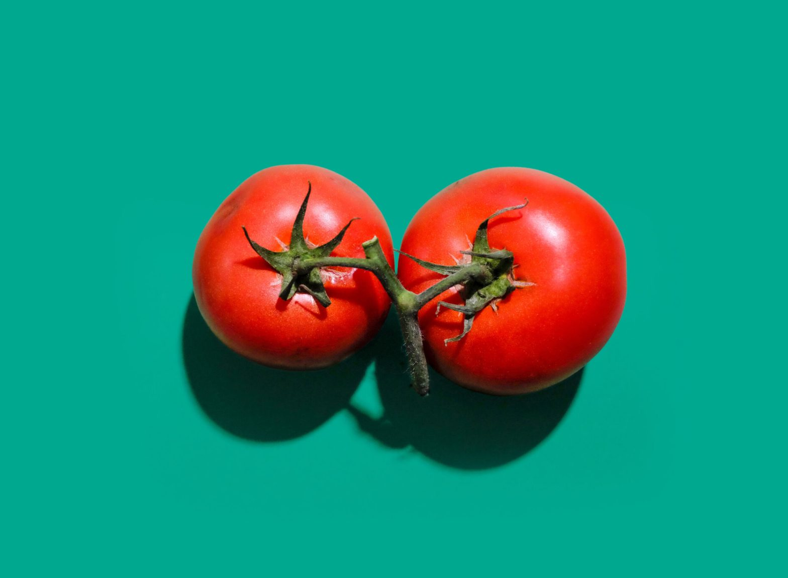 Image Contains: Two tomatoes on a teal background. This article is about the Pomodoro Technique.