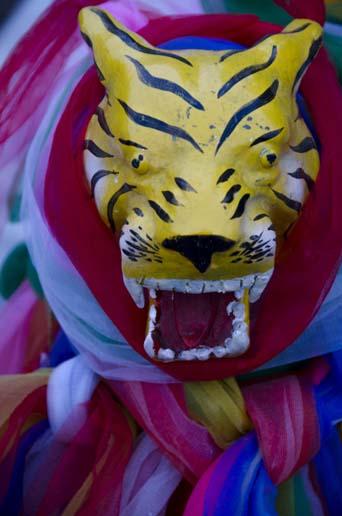 Tigre entouré de tissus de prière - Chiang Mai