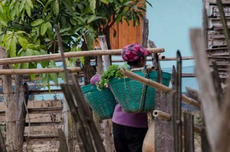 Vendeuse de salades - village Lishu près de Chiang Dao