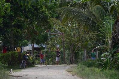 Charlie et les Chocolate Hills - Bohol - Philippines (10)