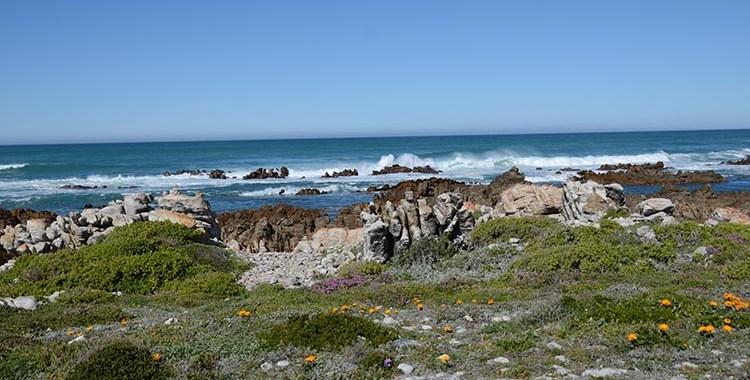 Cape Agulhas  - Afrique du Sud (5)