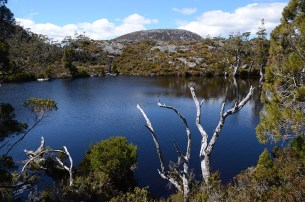 Le Cradle Mountain en Tasmanie - Jaiuneouverture - Tour du Monde (61)