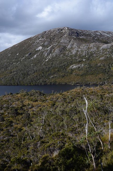 Le Cradle Mountain en Tasmanie - Jaiuneouverture - Tour du Monde (72)
