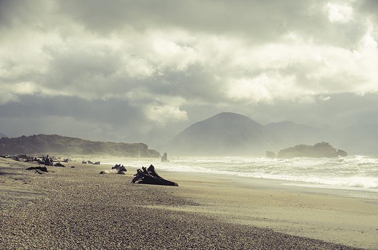 La jungle et les plages de la West Coast - Nouvelle Zélande - Jaiuneouverture Tour du Monde (5)