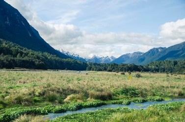 La vallée de Milford Sound - Nouvelle Zélande - Jaiuneouverture Tour du Monde