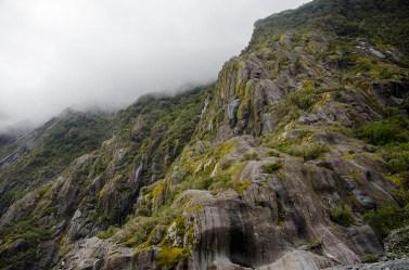 On a vu les glaciers Fox et Franz Joseph ! Nouvelle Zélande (9)