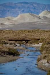 Salt Creek - Death Valley - USA