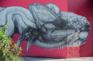 Street Art à Miami - USA (53)