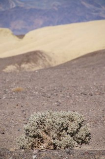 Superpositions - Death Valley - USA