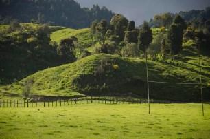 Région secrète en Nouvelle-Zélande (11)