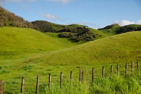 Région secrète en Nouvelle-Zélande (12)
