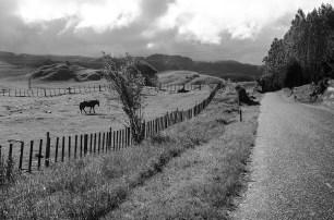 Région secrète en Nouvelle-Zélande (17)