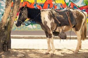 Street Art à Esteli au Nicaragua (29)