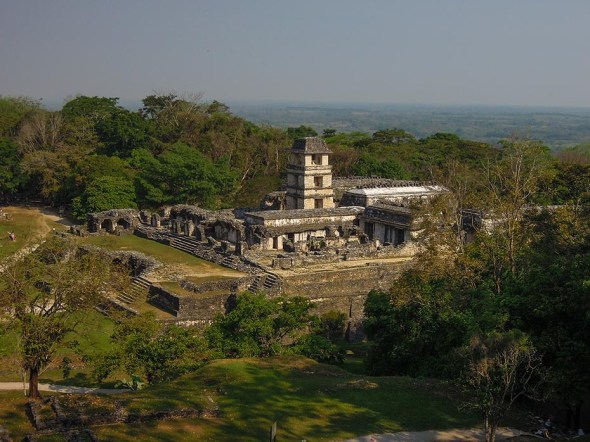 Palenque au Mexique (8)