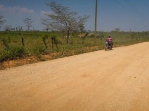 Passage de la frontière mexicano-guatémaltèque en direction de El Remate (2)