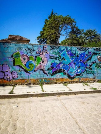 Street Art - San Cristobal de Las Casas - Mexique (17) copy