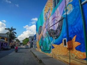 Street Art Tulum - Mexique (3)
