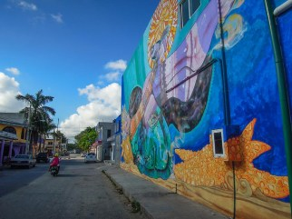 Street Art Tulum - Mexique (3)