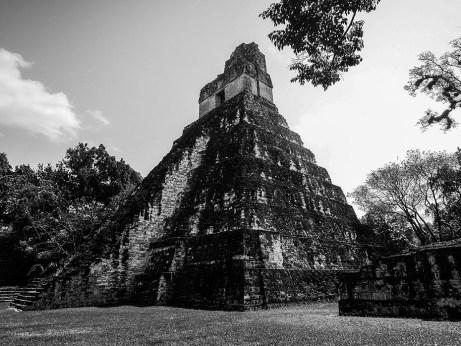 Tikal au Guatemala (19)
