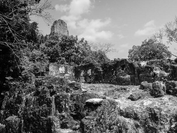 Tikal au Guatemala (22)