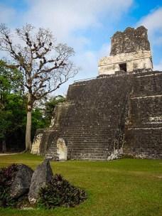 Tikal au Guatemala (5) copy