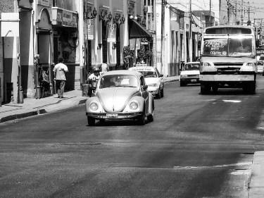 Villes coloniales du Mexique - Merida (13)