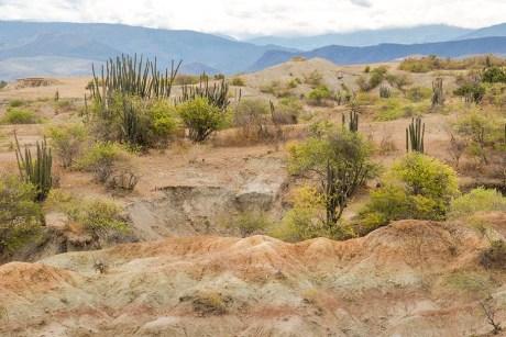 Desierto de la Tatacoa - Colombie (6)