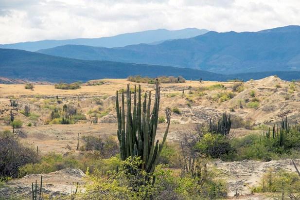 Desierto de la Tatacoa - Colombie (8)