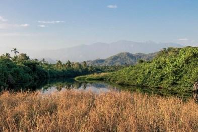 Palomino - Colombie (8)