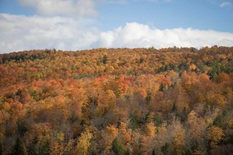 Dans le Vermont - USA (2)