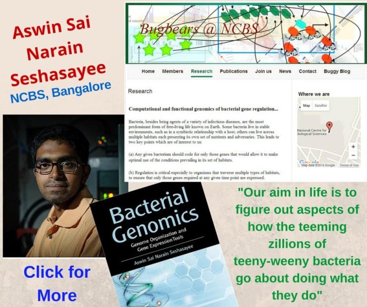 Aswin Sai Narain Seshasayee