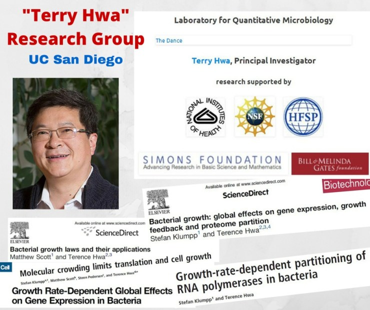 Hwa Research Group