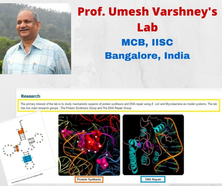 Prof. Umesh Varshney's Lab