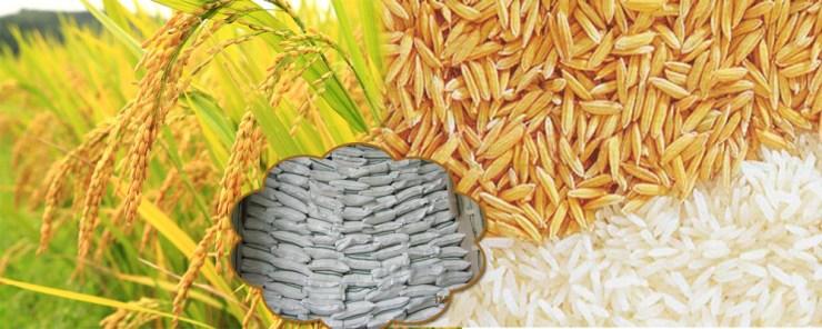 ricestorageslider
