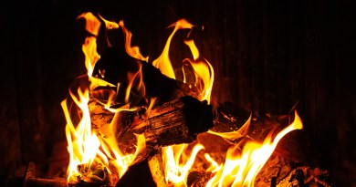 Fire Fireplace Coals Flame Burn  - Malika_photo / Pixabay