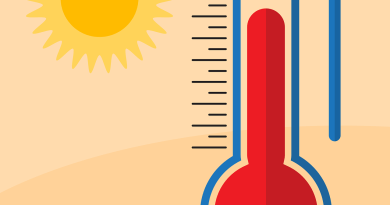 Summer Heat Weather Temperature  - Shafin_Protic / Pixabay
