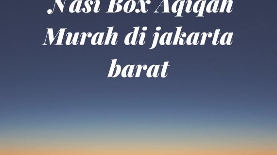 Harga Nasi Box Aqiqah Murah di jakarta barat