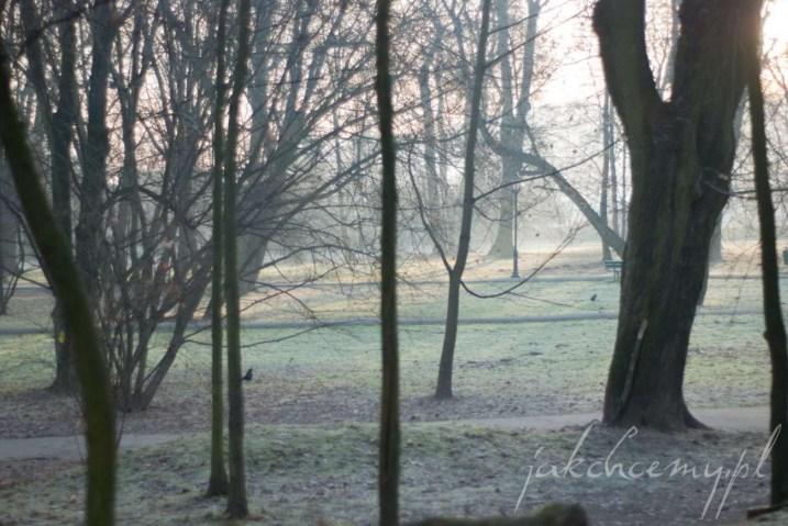 panorama oszroniona park krk