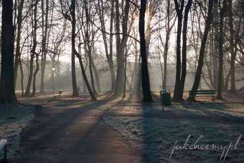 ławeczka w parku widok1